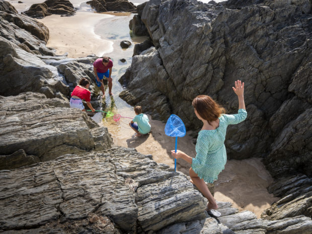 Rockpooling at Woolacombe bay beach